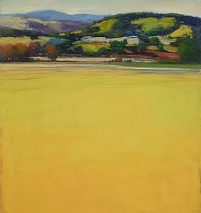 Yellow Valley by David Skinner